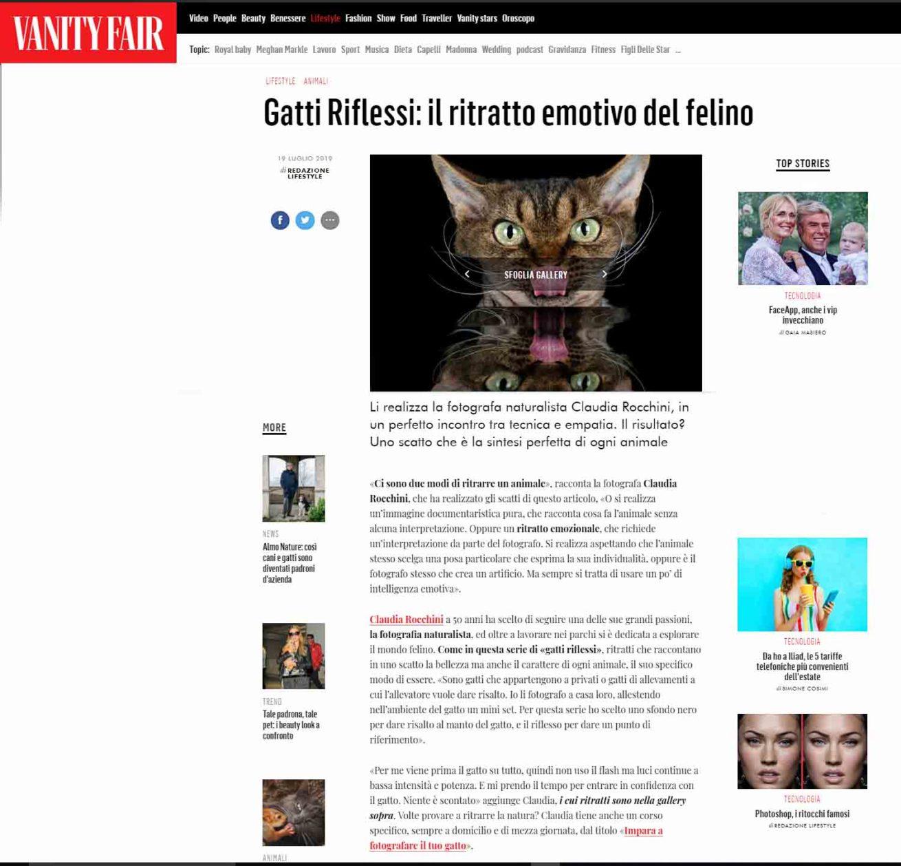 rocchini gatti vanity fair