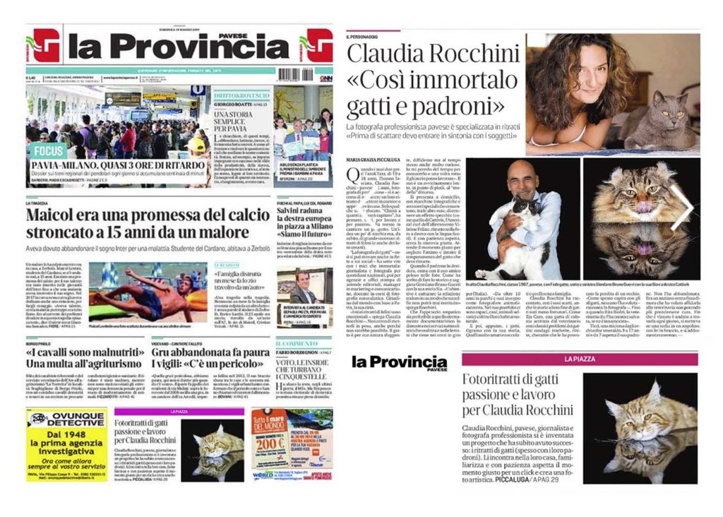 Rocchini intervista Provincia Pavese