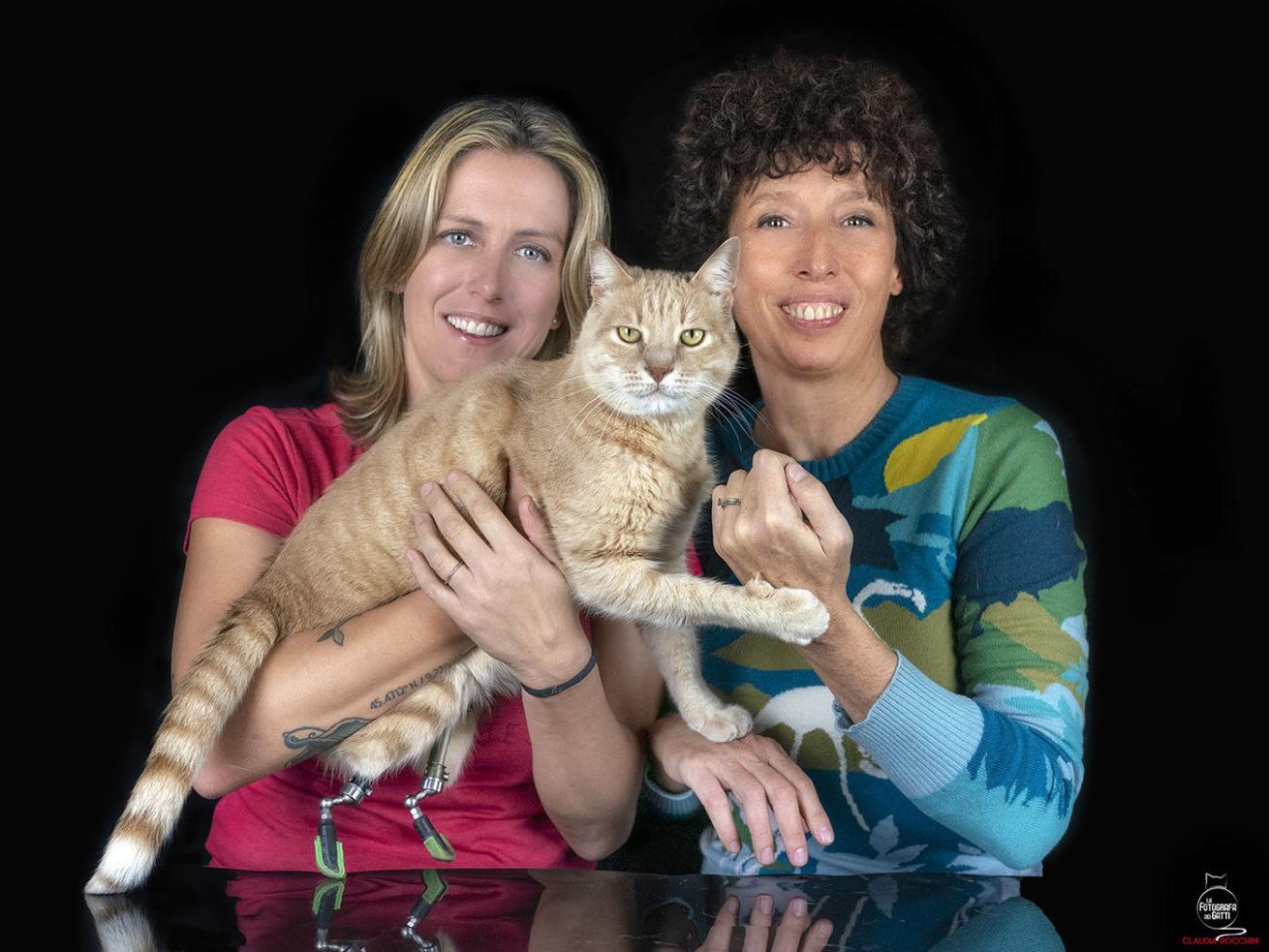 Protesi gatto Gottardi