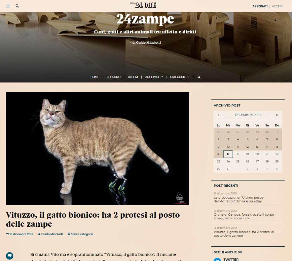 Rocchini Sole24ore gatto